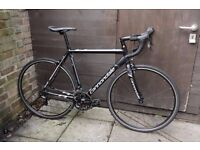 Road bicycle CANNONDALE CAAD 8 LIKE NEW CONDITION shimano sora
