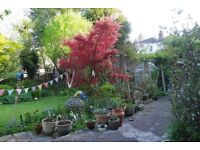 Beautiful bright two bedroom open plan home to rent in central Bristol, huge garden