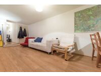 Superb 3 bed located a short walk from Brixton Station ideal for sharers - Plato Road