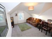 Large, modern 2-bed flat. Great location. Very bright, loads of storage space and parking.