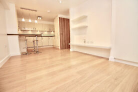 Stunning 1 bedroom ground floor apartment in Stoke Newington with large patio