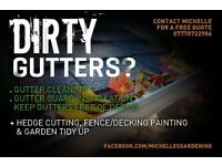 Gutter Cleaning, Gutter Guard Installation and Gardening Services
