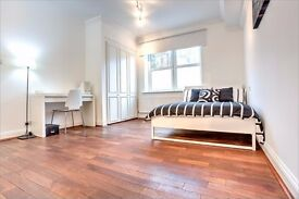 Large double bedroom with access to gym, sauna and Jacuzzi available in Kennington