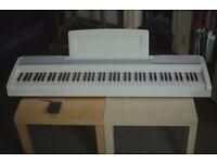 Korg SP-170 Digital Piano (White)
