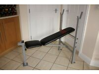 Pro Power weights bench - perfect for beginner or home gym