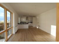Brand new 2 BEDS/2BATHS IN CANNING TOWN. 3 mins walk to station. Private Balcony . Available now