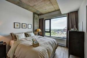 Furnished gorgeous new 2 bedroom condo, Giffintown