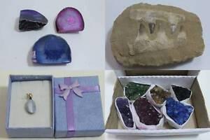 WR260 - Online Auction - Fossils, Gemstones & Giftware West Melbourne Melbourne City Preview