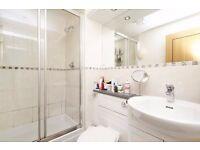 Cosy En-Suite Room in a two double room flat
