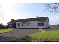 I'm Looking for house to rent. Bungalow, Cottage, Farmhouse, Detached. Lisburn to Portadown