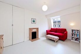 Spacious Two Bedroom Apartment - Great Ormond Street