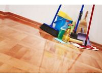 Are you looking for an experienced & reliable house cleaner in Bridgend? £10 per hour - Call now