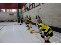 Manchester Bees Dodgeball Club