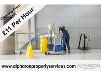 Professional Cleaning Service 100% Satisfaction Or Your Money Back Guaranteed