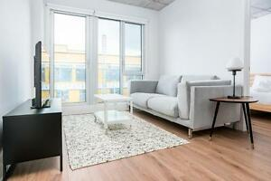 Furnished - Flexible 4 to 8 month lease! STARTING SEPTEMBER #770