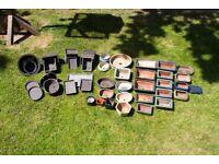 Bonsai Pots Collection B