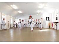 Free Karate Classes