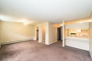 Primrose Lane Apartments - 8540-182 St. NW Edmonton Edmonton Area image 6