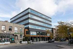 Renovated Office Space Available!