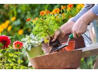 Experienced Gardening & Landscaping - Affordable Quotes Throughout Manchester