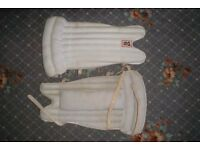 Cricket pads (WKeepers)