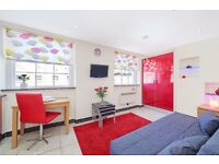 WALKING DISTANCE BAKER STREET TUBE STATION**AMAZING STUDIO**GREAT PRICE**