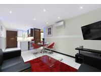 NEW two bedroom luxury furnished apartment in Marble Arch with a porter