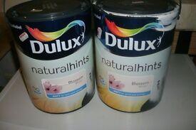 Dulux paint.