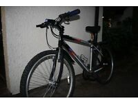 BARRACUDA MOUNTAIN BIKE WITH HELMET, LOCK, FRONT LIGHT, REAR LIGHT LASER, TOOL, MUDGUARD. SHIMANO