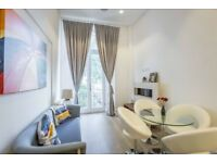 Stylish modern ONE/TWO bedrooms flat with roof terrace in CENTRAL LONDON