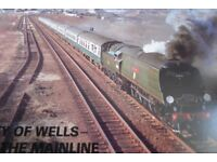 CITY OF WELLS ON THE MAINLINE BOOK