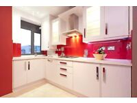 SPACIOUS 2 BED FLAT IN WHITECHAPEL, CLOSE TO STATION
