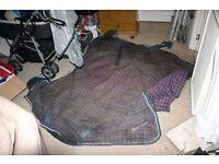 mark todd horse rug