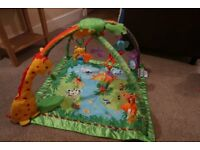 Fisher Price Rainforest Baby Gym