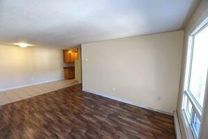 Spacious 2 Bedroom Family Suite for Rent- Heat Included!
