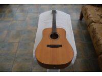 Larrivée D-02 electro-acoustic Guitar