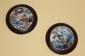 Display Frames (16) for Collectible Plates, by Van Hygen & Smythe (or as 2 lots) - NEW PRICE