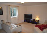 Double Bedroom for Single Occupancy in Ferndown