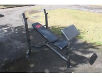 Pro Power Weights Bench with preacher pad, leg extension and lat pulldown