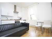 beautifully refurbished and fully furnished 2-bedroom flat just 2 mins from New Cross station