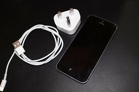 Apple iPhone 5s - 32GB - Space Grey (Unlocked) Smartphone