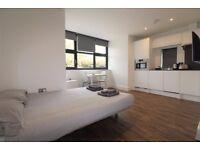 Spacious Studio Flat To Rent In Turnpike Lane, N8 0JE, London