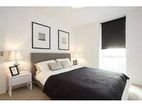 Stunning 2 bed 2 bath in Central London for longlet