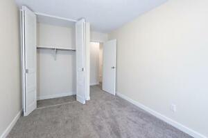 Spacious 2BR Apartment with AMAZING OUTDOOR PATIO!