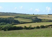 Permanent Herdsperson. Mid Cornish North Coast
