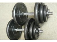 weight - dumbell weight Chromed plated Bar - glazed cast-iron plates - body-power brand