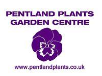 Plant Nursery Assistant
