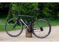 Bianchi Sempre Carbon Campaganol 55cm Road Bike