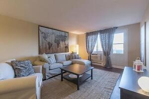 Bachelor Apartment for Rent in Mont Bleu, Hull: Gatineau, Quebec