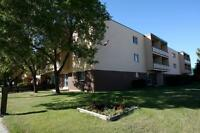 1 Bedroom Suite Available for June in Charleswood